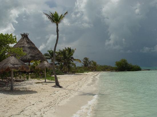 Contoy Adventures: Western half of beach