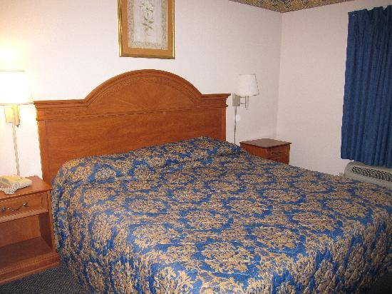 Econo Lodge Lookout Mountain : room 312 king bed