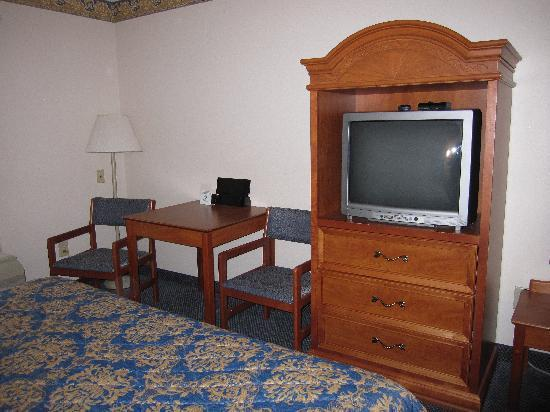 Econo Lodge Lookout Mountain: room 312