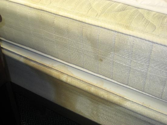 Extended Stay America - Detroit - Sterling Heights: The soiled mattress