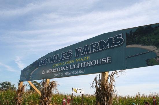 Bowles Farm Corn Maze