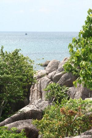 Koh Tao Cabana: The cabana
