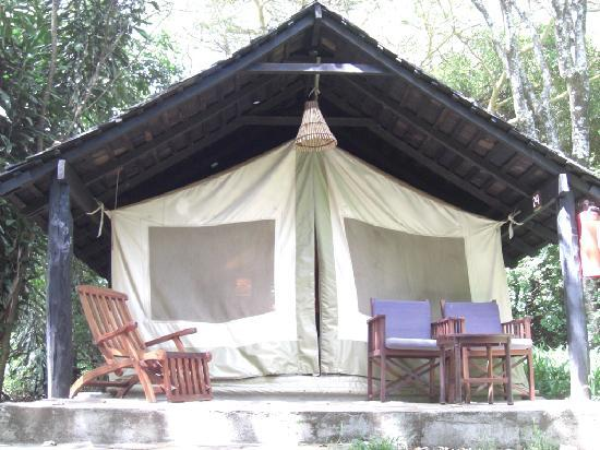 Sarova Mara Game Camp: Tienda/Habitación