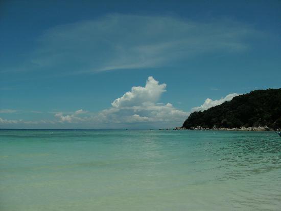 Fauna Beach Chalet: The beach of Fauna Chalet