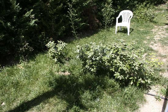 Résidence Goélia Le Mas des Arènes : le jardin privatif.....