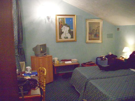 Hotel La Fenice Et Des Artistes: Twin Room