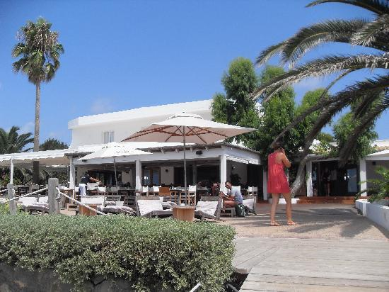 Foto de gecko hotel beach club migjorn boda tripadvisor - Hotel gecko beach club formentera ...