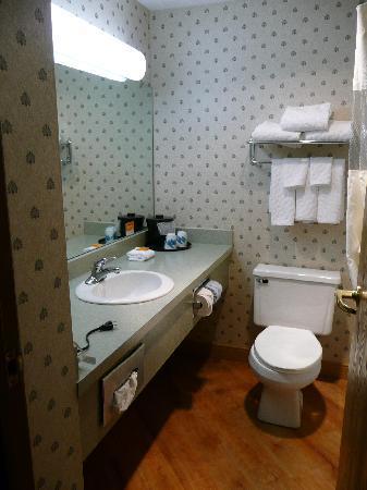 La Quinta Inn & Suites South Burlington: Bad