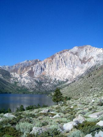 Convict Lake Resort: summer view of Convict Lake
