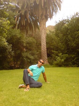 Paseo por jardin canario picture of las palmas de for Jardin canario restaurante
