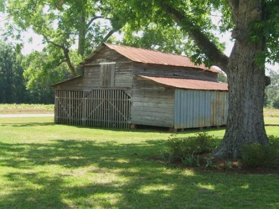 Boston, GA: The Barn. This barn is also over 200 years old. 50 years ago it held horses and hay lofts Now-
