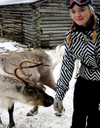 Zdjęcie Kuusamo