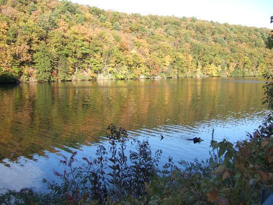 Foxburg Inn: Autumn on the Allegheny