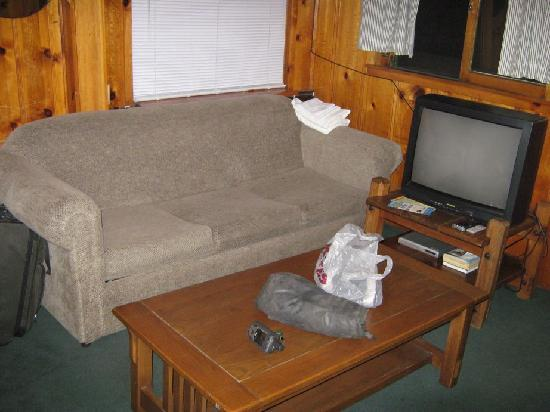 Shore Acres Lodge: Couch in front of fireplace. This couch smelled like it had been, well a bad thing.