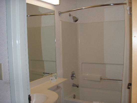Microtel Inn & Suites by Wyndham Maggie Valley: Rm111 bathroom