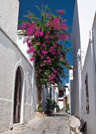 Avra Apartments: Lindos side street