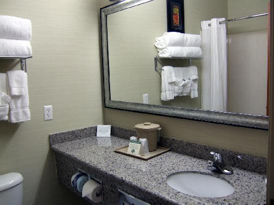Comfort Suites Denver Tech Center: lots of counter/mirror space