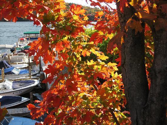 Walter's Basin Pub or the Basshole Pub : fall color at Walter's Basin