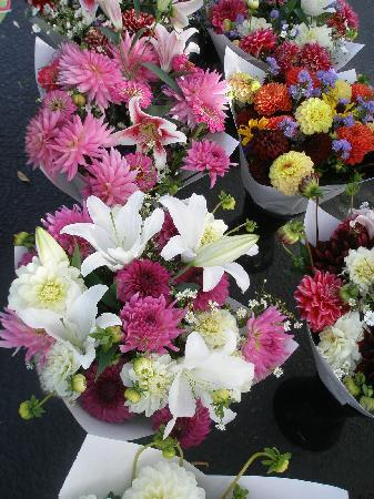 Oregon City Farmers Market: Beautiful boquets for sale at the OC Farmers Market.
