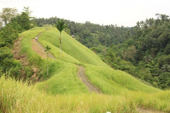 Komaneka at Tanggayuda: Cycling route