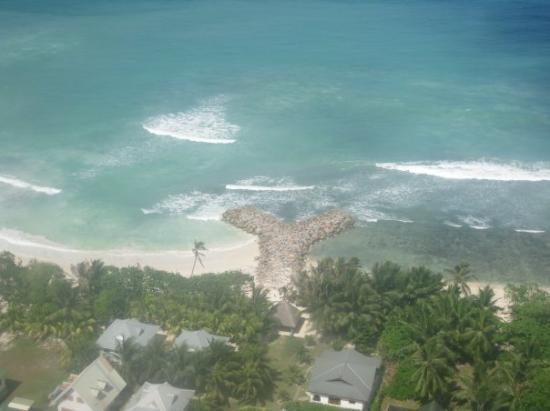 เกาะพราสลิน ภาพถ่าย