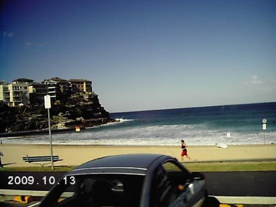Houses overlooking cliff near Manly Beach