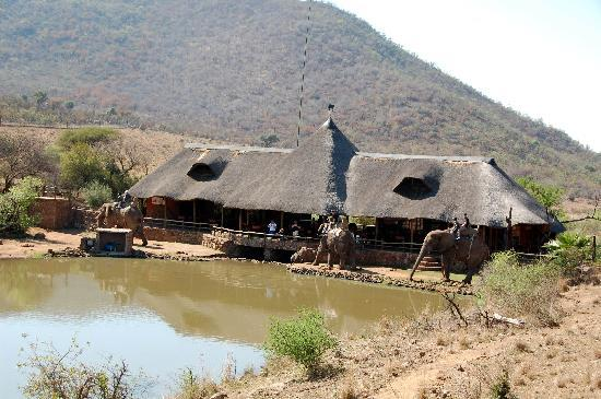 Kwena Chalets - Sun City: Elephant safari 2.