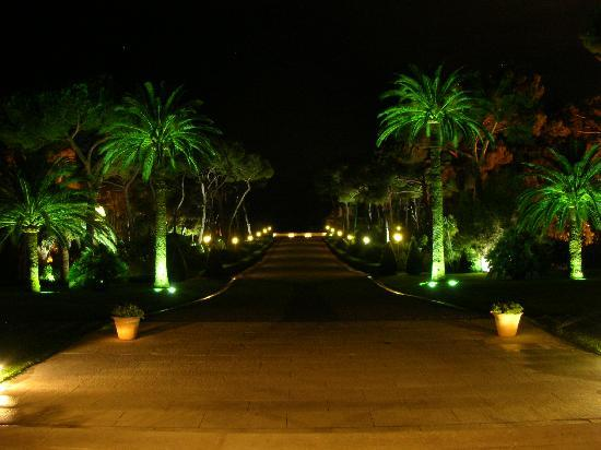 Hotel du Cap Eden-Roc: Eden-Roc at Night