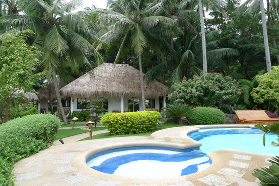 Pura Vida Beach & Dive Resort: pool