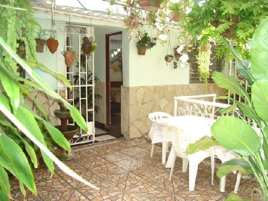 Roy's Terrace Inn : terraza