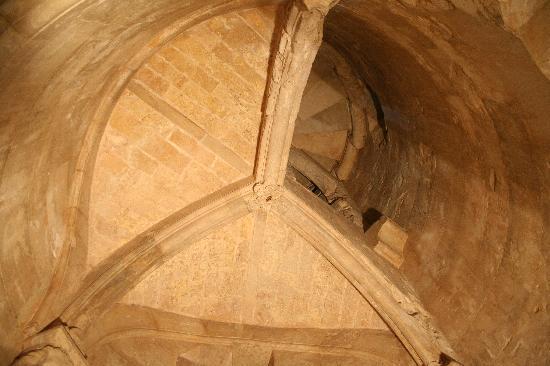 Andria, إيطاليا: particolare di una scala a chiocciola
