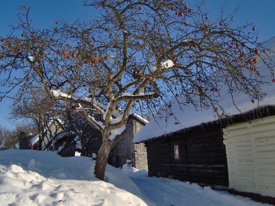 Vlkolinec: Vkolinec in inverno
