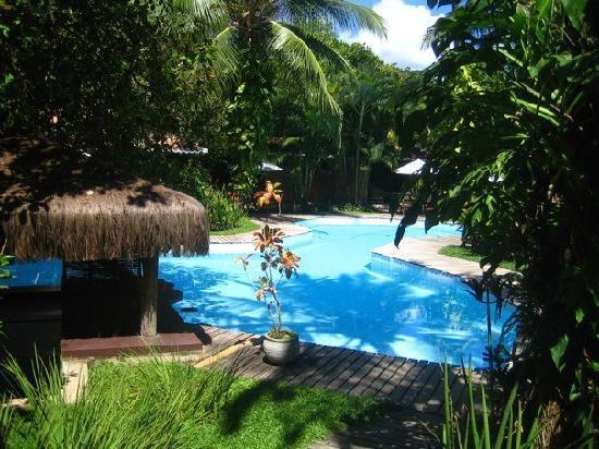 Pousada Berro do Jeguy: pool in the day