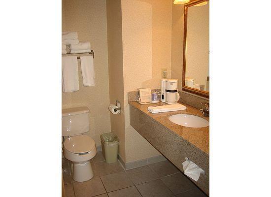 Holiday Inn Express Murrysville/Delmont: Bathroom