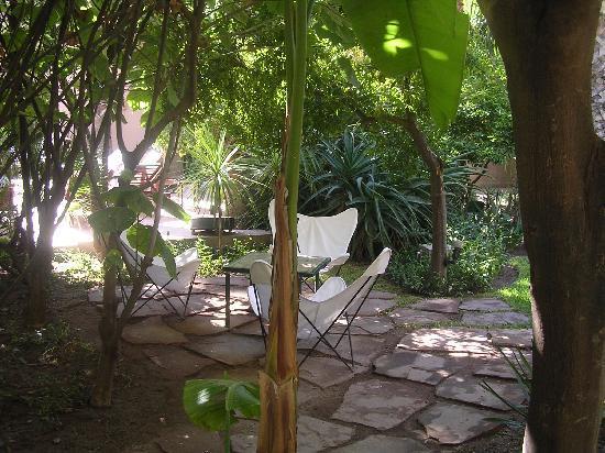 Les Jardins de la Medina : un rincon del jardin
