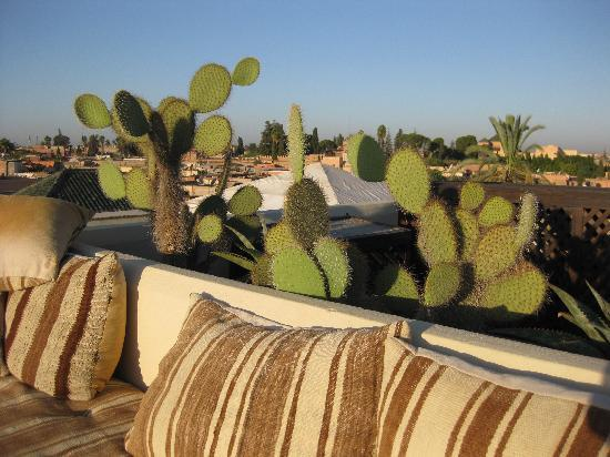 Dar Mo'da: Dar Moda terrace