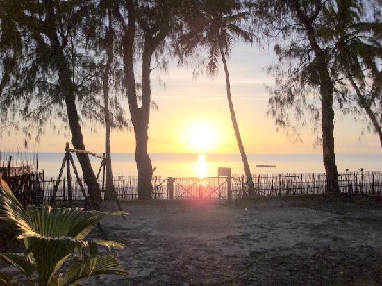 Bwejuu Village Guest House: An Amazing Sunrise