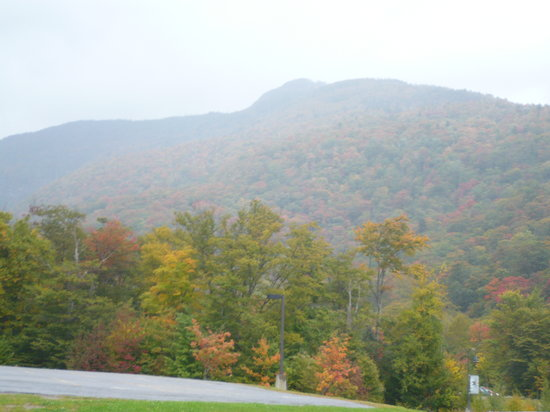 The Delibakery at Trapp Family Lodge : View From Coffee Shop Veranda