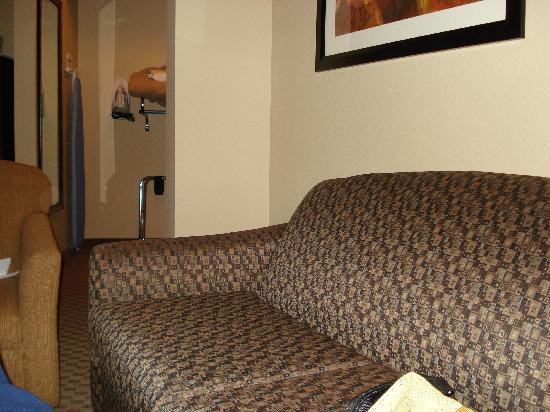 Comfort Suites Kodak: sofa