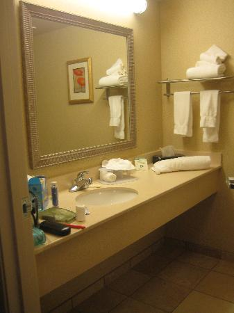 Holiday Inn Express Hotel & Suites Marysville : The bathroom