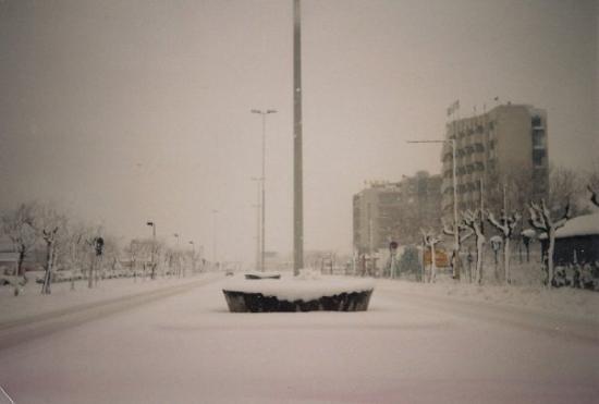 RICCIONE: Viale Tito speri bajo una nevada