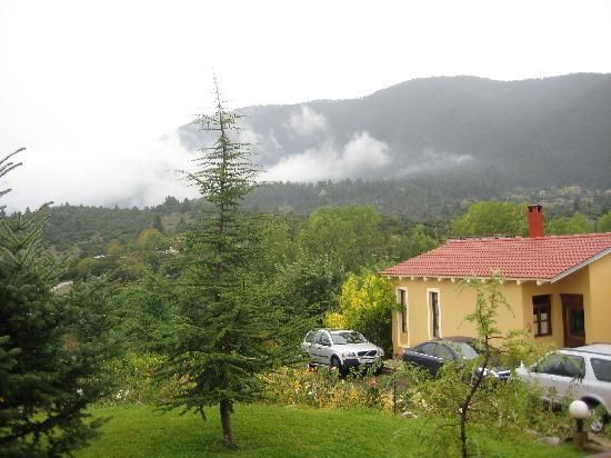 Витина, Греция: Mountain view from our room-house.