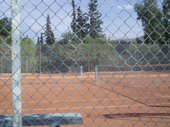 Chems Le Tazarkount: le tennis