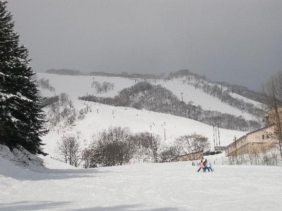 Asuka Apartments: overcast day - still awesome skiing!!