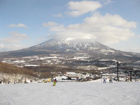 Asuka Apartments : awesome skiing/boarding in Niseko