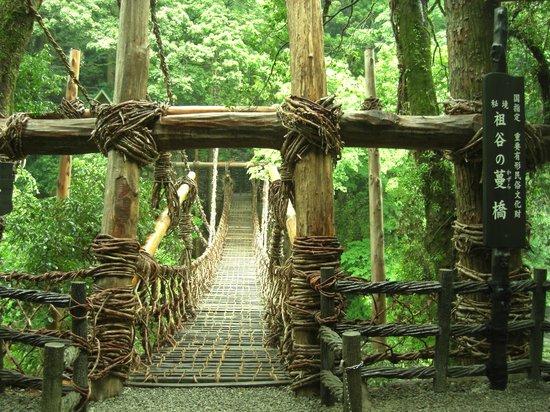Miyoshi, Japão: 重要文化財かずら橋
