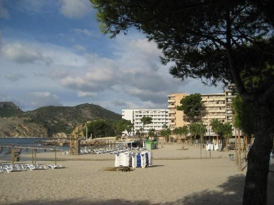 Grupotel Playa Camp de Mar 사진
