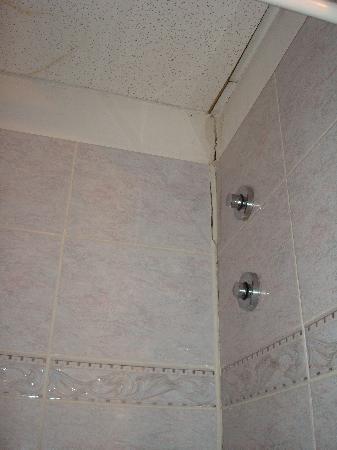 هوتل كامبريدج: Grieta en el cuarto de baño
