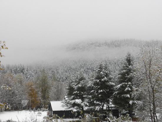 The Waitsfield Inn: Winter Wonderland View from Parking Lot