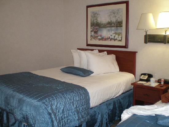 Baymont Inn & Suites of Des Moines: Beautiful beds
